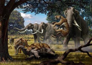 Tigre-dentes-de-sabre - Mauricio Antón